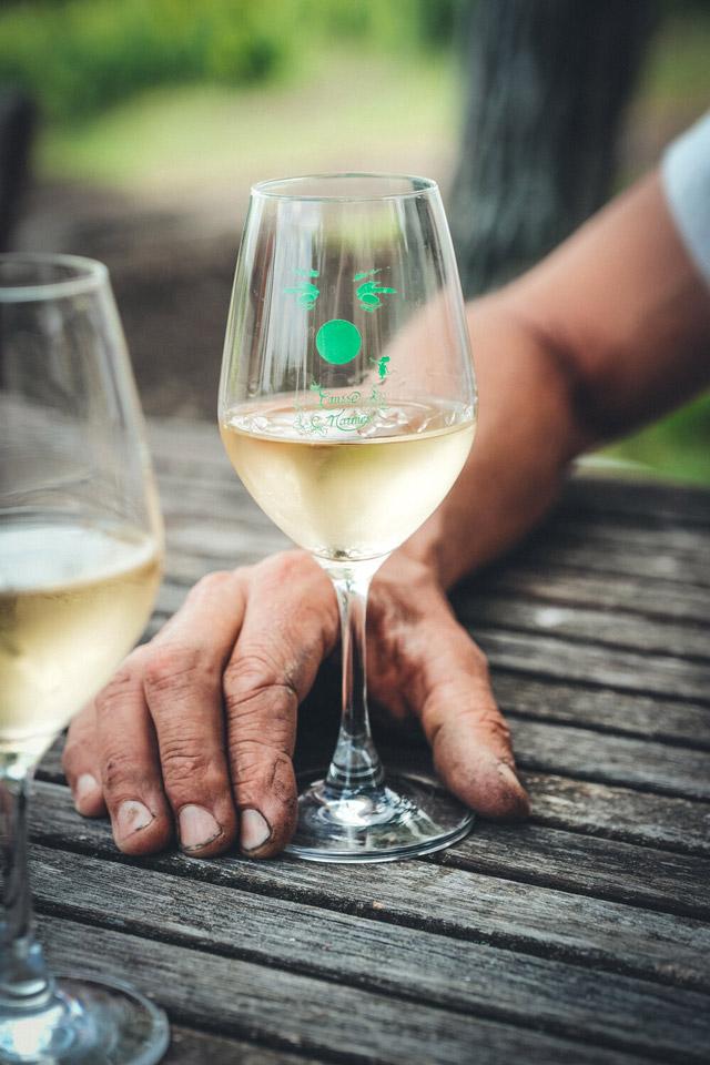 verre de vin blanc domaine causse marines